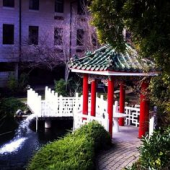 Chinese Garden.png