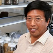 Professor YongLin Ren
