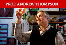 Prof Andrew Thompson