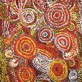 Myra COOK, Kartjinguku Creeky, 2006. Acrylic on canvas, 101 x 75 cm. Donated through the Australian Government's Cultural Gifts Program by Jacquie McPhee 2013