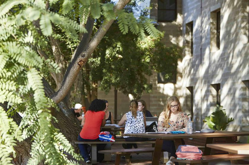 Students studying and socialising in the Summer Courtyard at the Student Hub.