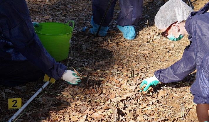 Forensic student Elizabeth systematically searching for evidence at a suspected grave site