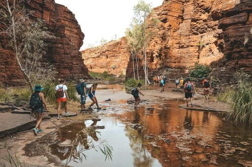 International students walking through gorges at Karijini
