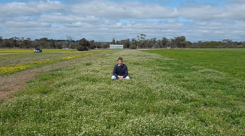 Man sitting in the Wheatbelt flowering with Fran2o